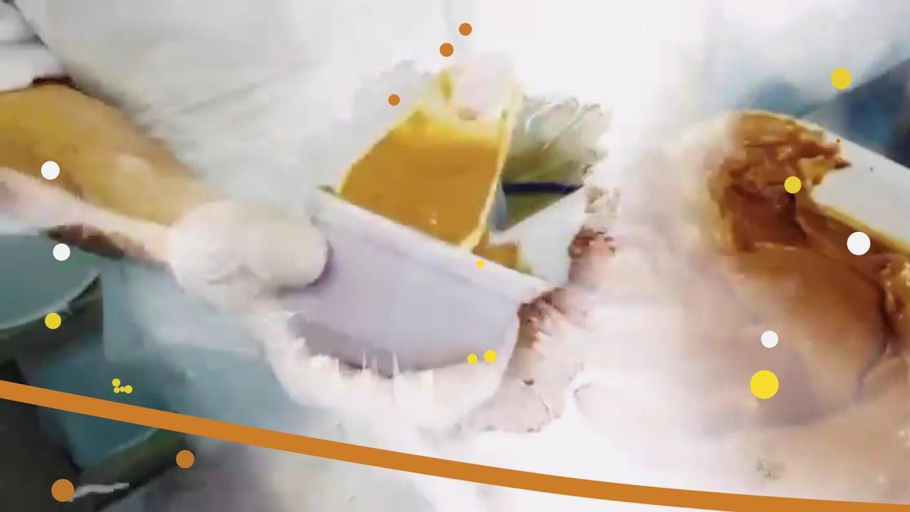 Les Glaces sont à La Ferme au Chocolat Fonderie à la Campagne !