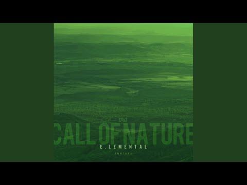 Call of Nature (Original Mix)