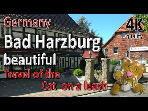 Bad Harzburg. Beautiful. Germany.Travel of the Cat  on a leash.