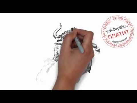 Как нарисовать знак зодиака телец карандашом