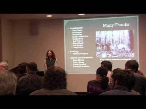 Vegetation response to episodic disturbance - Harvard Forest