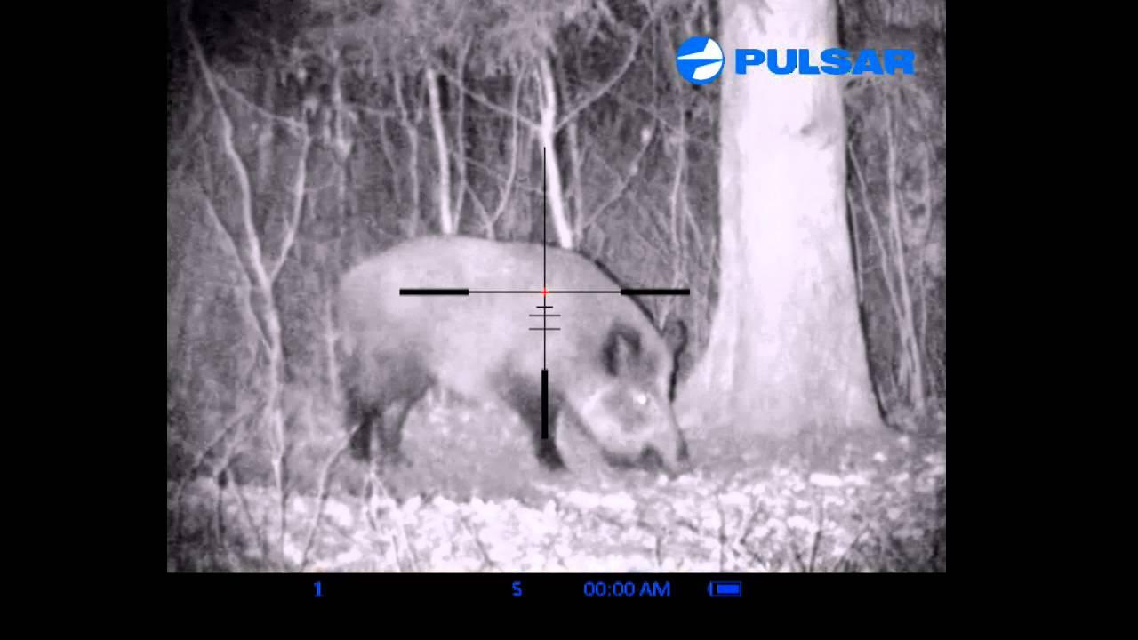 Digisight n770. digital night vision riflescope youtube
