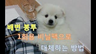 강아지 배변봉투, 일회…