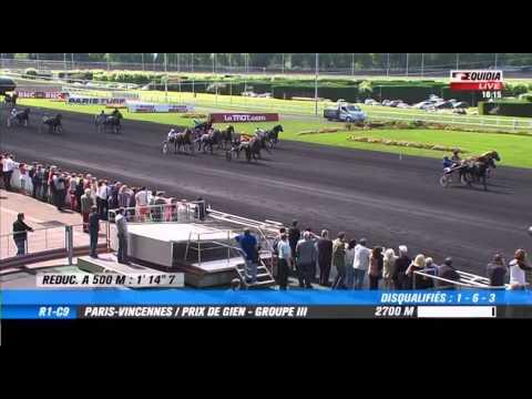 Vincennes  -  Prix de Gien (GROUPE III) - 07-06-2014 - Bold Eagle