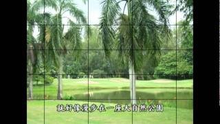 Royal Chiangmai Golf Club & Resort (Chiangmai Thailand)