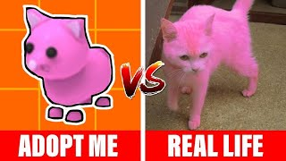 ADOPT ME PETS IN REAL LIFE  PART 2
