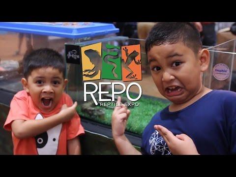 Malaysia Reptiles Expo (REPO) 8-10 April 2016