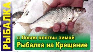 Ловля плотвы зимой на мормышку с прикормкой - Рыбалка на Крещение (БВХ, Дельфин)