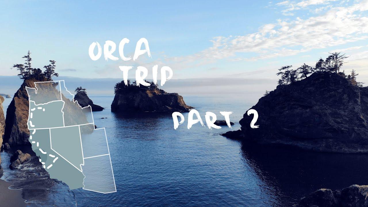 Redwoods Secret Beach Napa Valley Orca In 4k