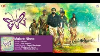 Malare Ninne Kaanathirunnaal - Premam | Nivin Pauly | Sai Pallavi | Anupama | Madonna Sebastian