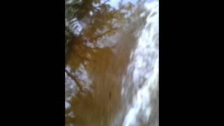 Myakka Park Road Flooded David Barkasy