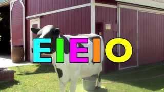 OLD MacDonald EIEIO Song - Real Farm Animals & Sounds - Nursery Rhyme