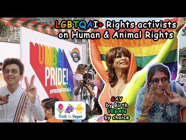 LGBTQAI+ Rights Activists on Human & Animal Rights