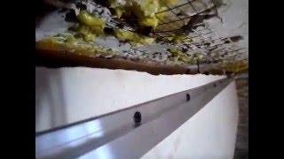 Установка и монтаж натяжных потолков. Урок №3.(00:06 Как подготовить помещение к монтажу натяжного потолка. 00:24 Перед монтажом необходимо произвести некото..., 2013-01-15T14:00:03.000Z)