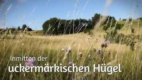 Ferienwohnung in der Uckermark bei Marita Bachmaier