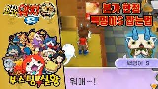요괴워치2 본가 한정 백멍이S 잡는법 [부스팅TV] (요괴워치 2 진타 3DS / Yo-kai Watch 2)