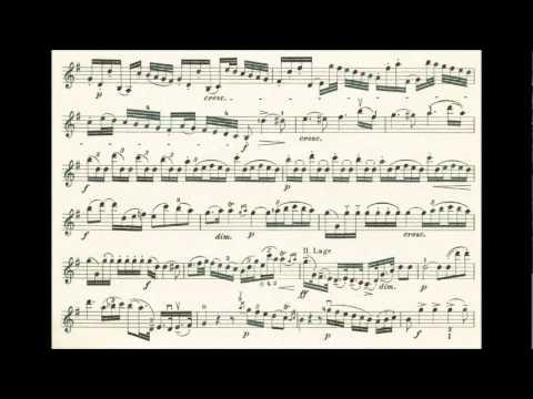 Haydn, Joseph 4th violin concerto in G-dur