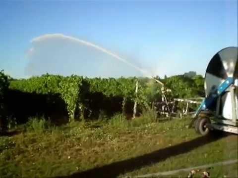Irrigazione vigneto ha 5 estate 2010 youtube for Irrigazione vigneto