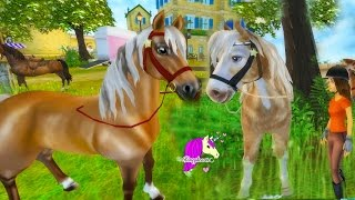 Flat Pancake? - Star Stable Horses Game Let's Play with Honeyheartsc Part 7 Video Series