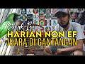 Cucak Ijo Harian Non Ef Juara Di Gantangan Bongkar Settingan Cucak Ijo Komat By Hobi Id  Mp3 - Mp4 Download