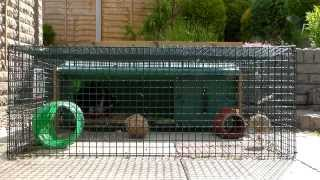 3 In 1 Rabbit Hutch And Run Tours- June 2013 | Rosiebunneh