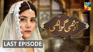 Adhi Gawahi Last Episode HUM TV Drama