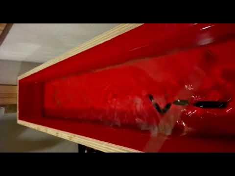 Prova nuoto anguilla 5 sezioni