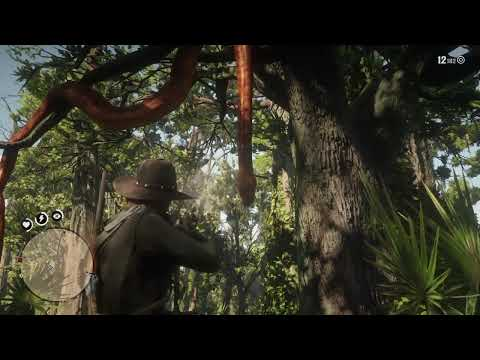 Image result for red dead 2huge snake in tree