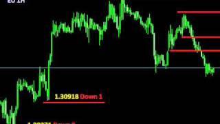 Today 14 Feb 2012 EURUSD 1 Hour Chart Forex Trading Range