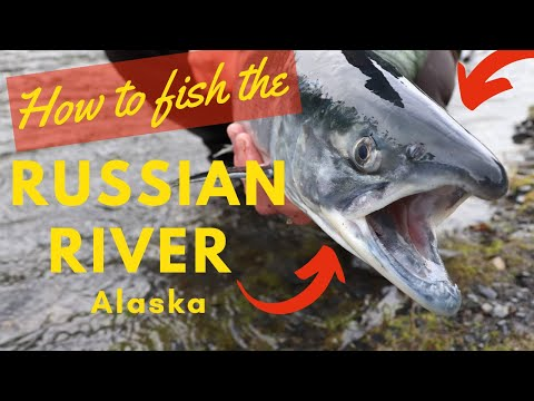 How To Fish The Russian River Alaska - CATCH YOUR LIMIT!!!