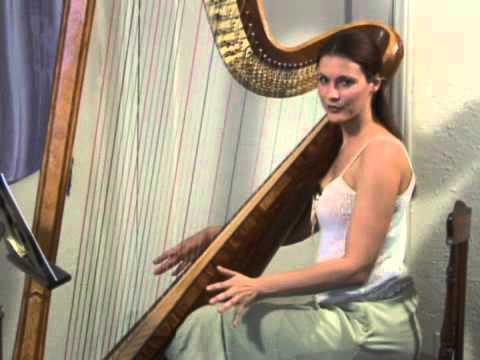 Harp Percussion Tips