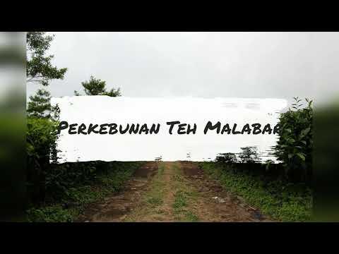 Perkebunan Teh  Pangalengan Bandung