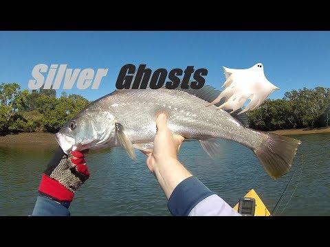 The Hunt For Mulloway - SE Qld Estuary Lure Fishing  - Kayak Jewfish