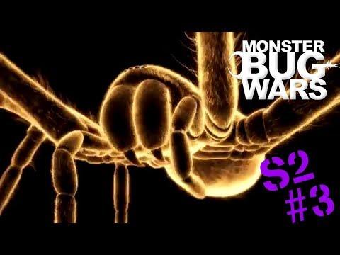 Monster Bug Wars | Season 2 Animation Collection #3