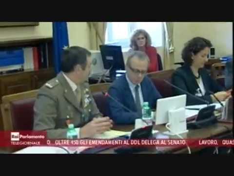 Audizione del cocer in iv commissione difesa della camera for Commissione difesa camera