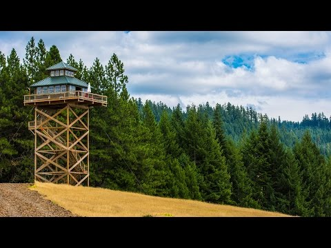 Treehouse Without the Tree: Life in a Fire Lookout Home