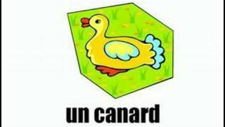 Французский - Животные - 4