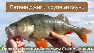 Летний джиг и крупный окунь : Практика ловли с Валерием Сикиржицким