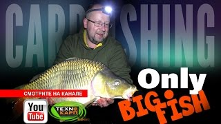 Only BigFish