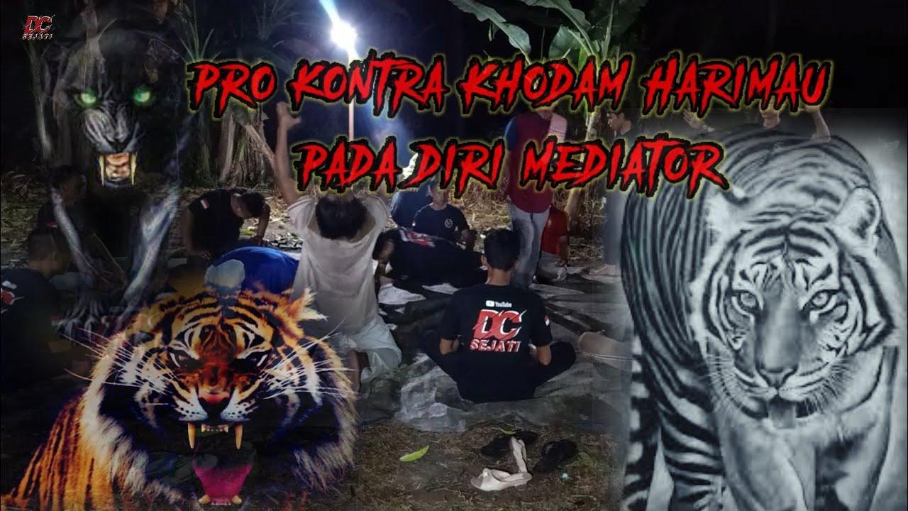 Mediasi Penyatuan khodam Harimau Pada Diri Manusia | DC Sejati