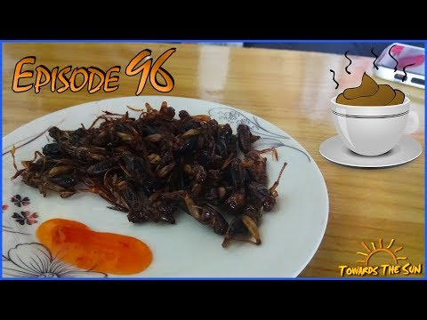 Drinking COFFEE made of SHIT and eating crickets. Dalat (Vietnam). Towards The Sun by Bike 96