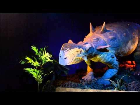 Ankylosaur animated !A
