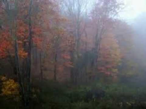November Rain - (Instrumental Version)
