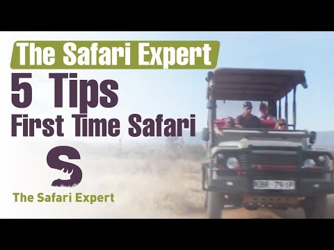 First Time Safari - The Safari Expert - Andre Migliarina
