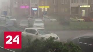 видео Жителей Подмосковья предупредили о сильном ветре в День России