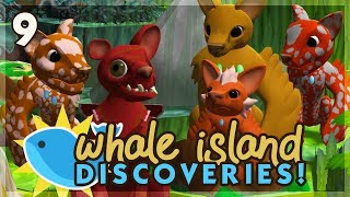 Curse of the Coconut Trees! | Niche Let's Play • Whale Island Discoveries - Episode 9