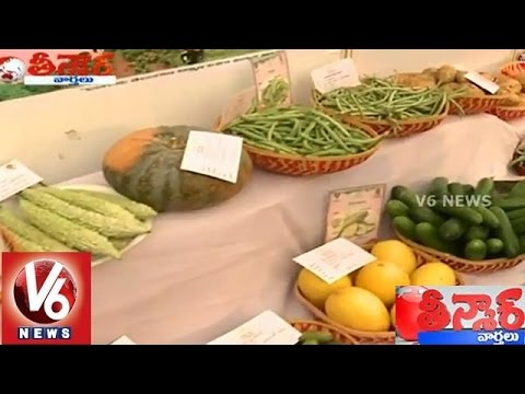 Organic Vegetables Exhibition in Hyderabad - Teenmaar News (27-01-2015)