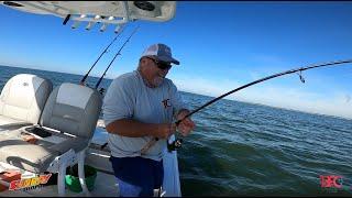 Incredible Bite?????  Tampa Bay Fishing