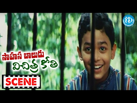 Sahasa Baludu Vichitra Kothi Movie Scenes - Chimpanzee Escapes From Zoo || Vijayashanti