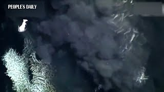 Chinese submersible captures life of amazing creatures 2000 meters below sea level